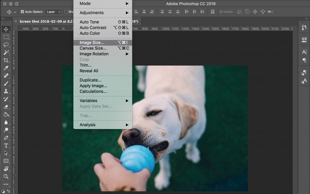 Photoshop Photo Optimization
