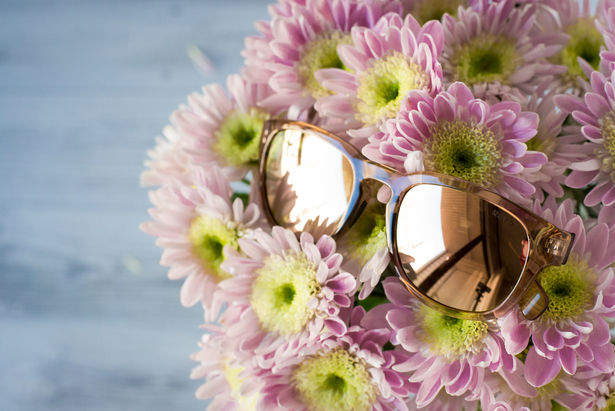 Reve Sunglasses Spring Shoot