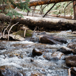 Colorado Hikes – Willowbrook