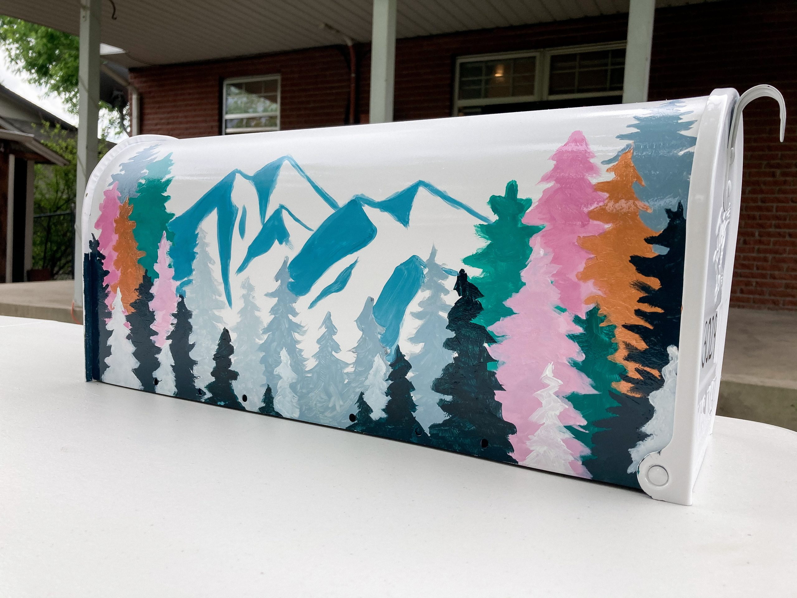Finished mountain painting on mailbox