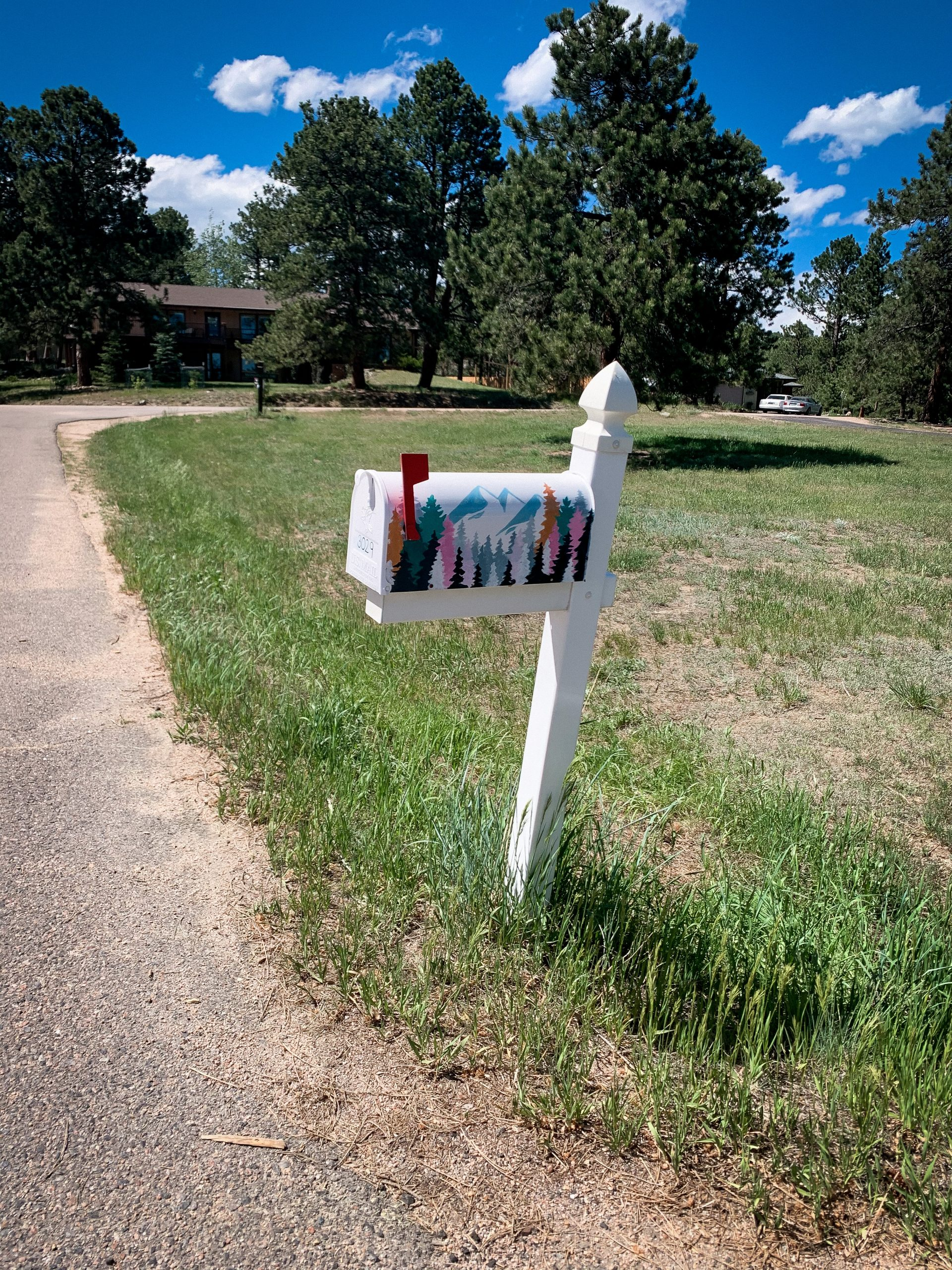 Mountain scene painting on mailbox