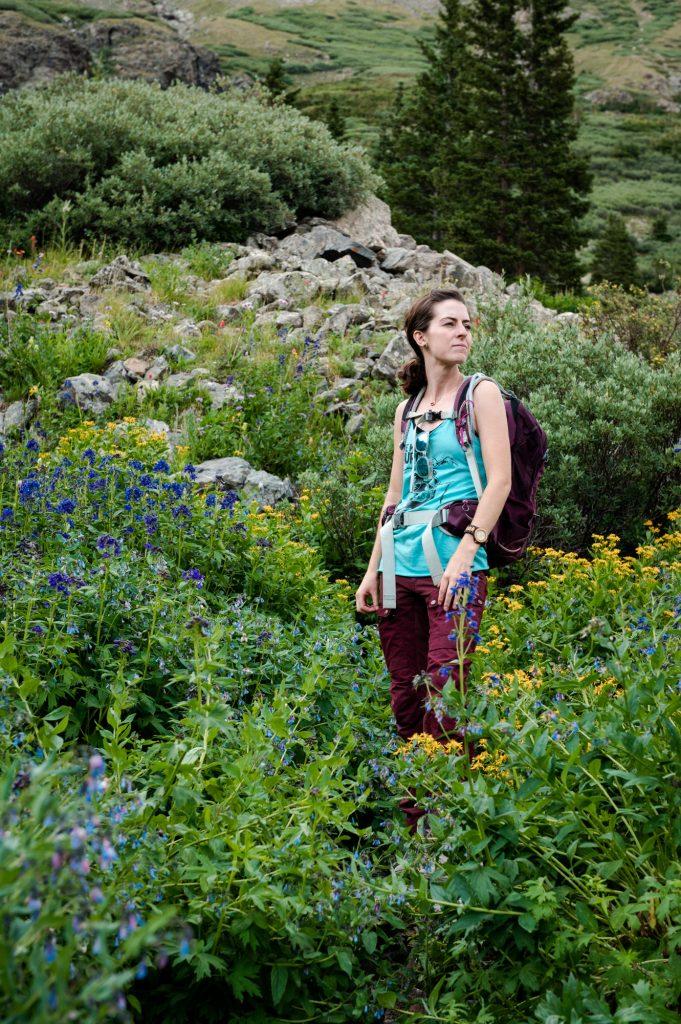 Wildflower mountainside