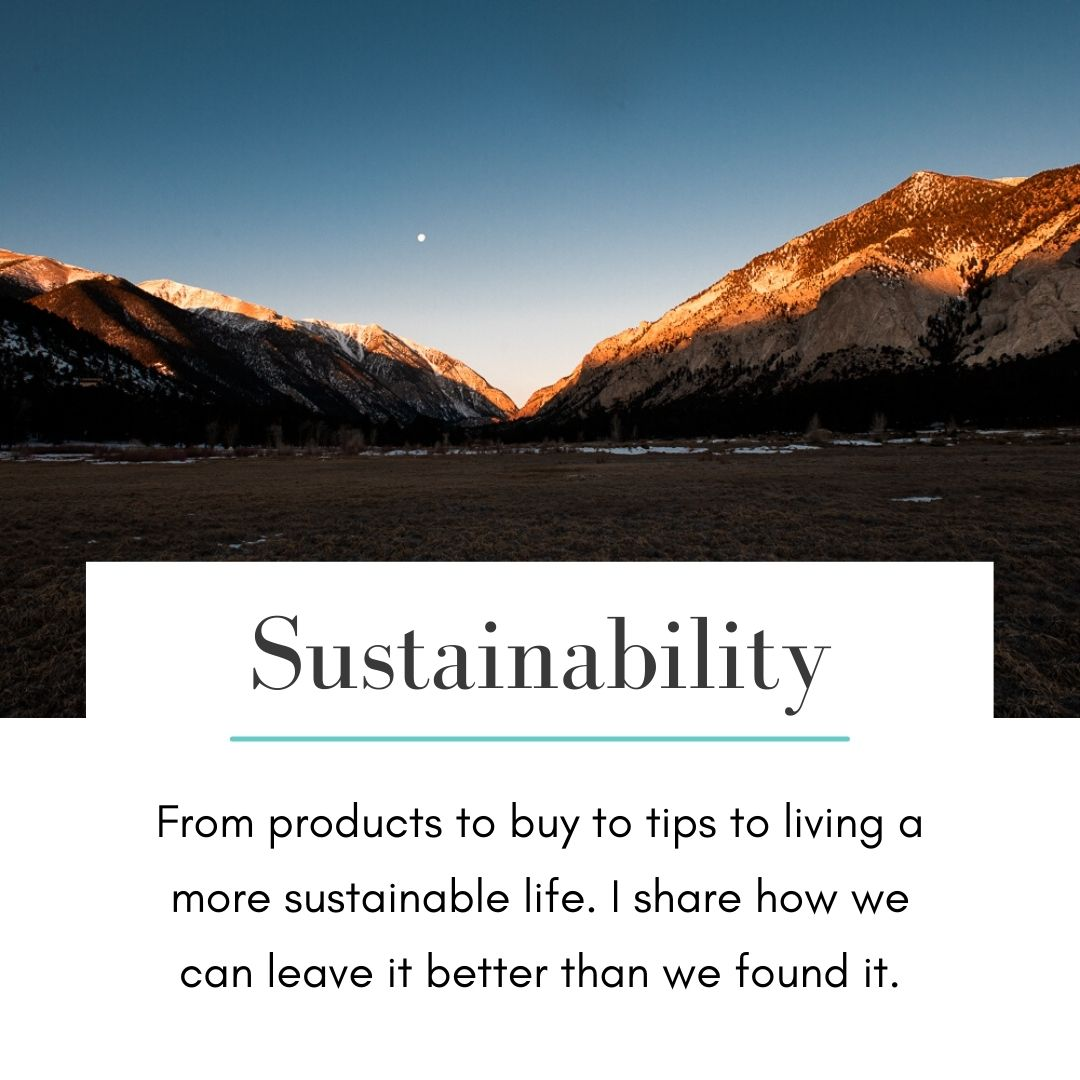 Sustainability - Blog